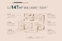碧桂园天樾户型-小柯网